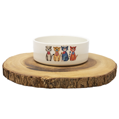 Small/Medium Pet Dish
